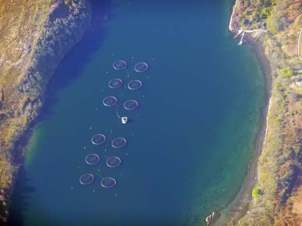 Flight to Barra - Fish Farming
