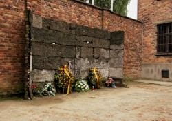 Auschwitz - Wall of Death
